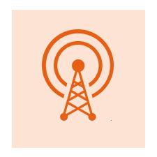NetworkAccess icon Lepton